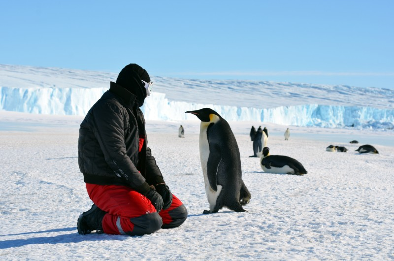https://backoffice.playhugelottos.com/uploads/assets//PHL_2020/June_2020/The_most_luxurious_experiences_for_multimillionaires_-_penguins_in_Antarctica.jpg